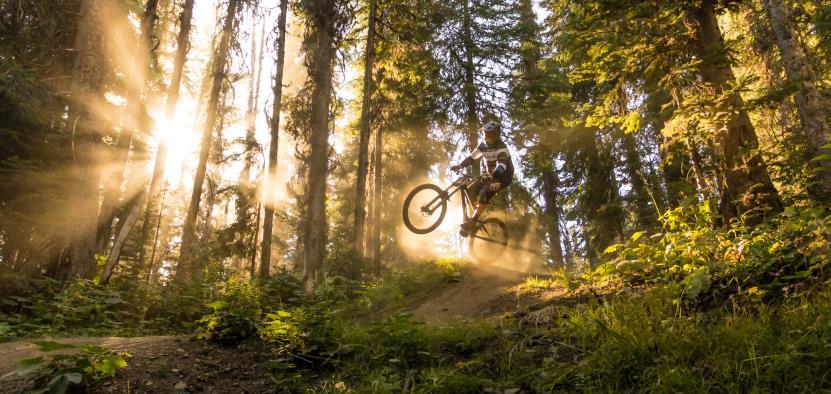 E-Mountainbike Kurse bei 2cycle