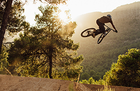 Seek: Downhill / Freeride