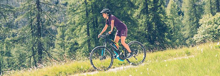 e-bike guide